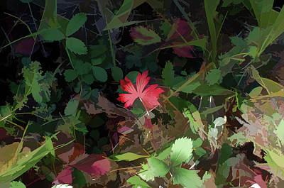 Digital Art - Red Leaf Herald by Aliceann Carlton