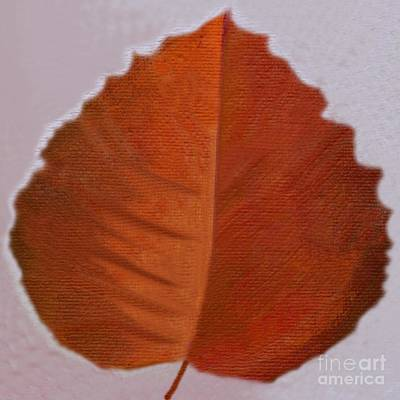 Digital Art - Red Leaf In Fall by Helena Tiainen