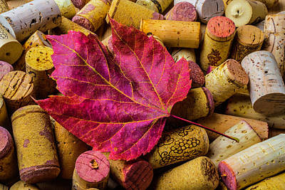 Red Leaf On Wine Corks Art Print by Garry Gay