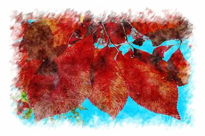 Print featuring the photograph Red Leaves by Jean Bernard Roussilhe