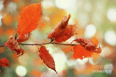 Photograph - Red Leaves by Jutta Maria Pusl