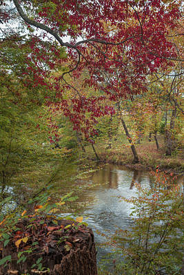 Photograph - Red Leaves Of Autumn by John M Bailey
