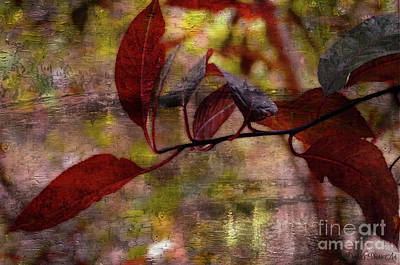 Photograph - Red Leaves Painted Effect by Debbie Portwood