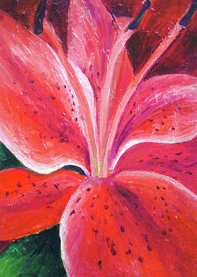 Painting - Red Lily by Alexandra Florschutz