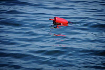 Photograph - Red Lobster Buoy by Rick Berk