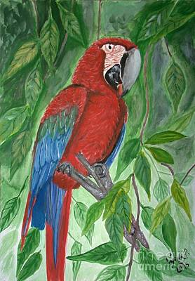 Wall Art - Painting - Red Parrot by Cybele Chaves