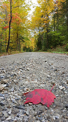 Red Maple Leaf On Vermont Backroad Art Print