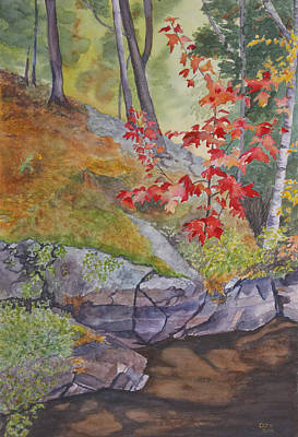 Red Maple Leaves Art Print by Debbie Homewood
