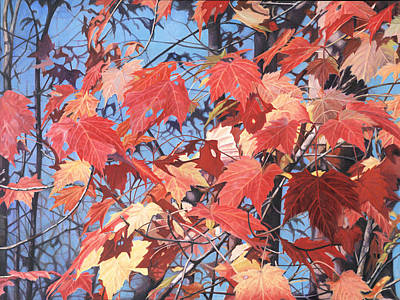 Painting - Red Maples by - Harlan
