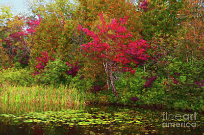 Digital Art - Red Maples Over Lily Pads - Painterly by Les Palenik