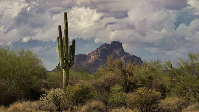 Photograph - Red Mountain Arizona  by Saija Lehtonen