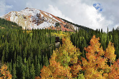 Photograph - Red Mountain Aspen Colors by Ray Mathis