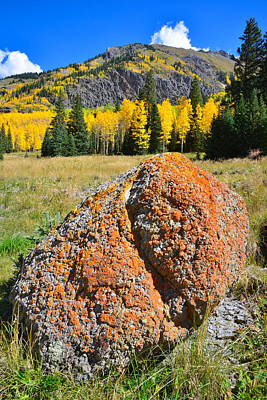 Photograph - Red Mountain Boulder by Ray Mathis