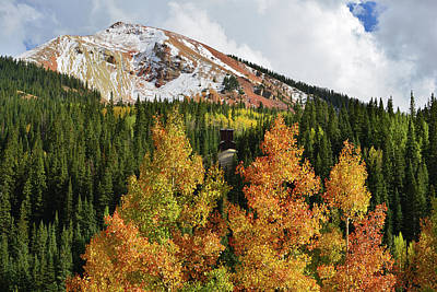 Photograph - Red Mountain Multicolored Aspens by Ray Mathis