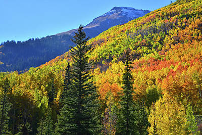 Photograph - Red Mountain Pass Fall Color by Ray Mathis
