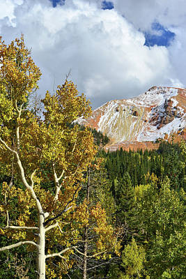 Photograph - Red Mountain Thunderheads And Aspens by Ray Mathis