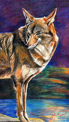 Endangered Mixed Media - Red Mountain Wolf by John Keaton