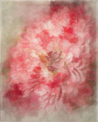 Mixed Media - Red Mum Abstract by Teresa Wilson
