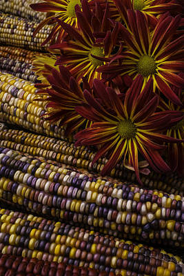 Indian Corn Wall Art - Photograph - Red Mums And Indian Corn by Garry Gay