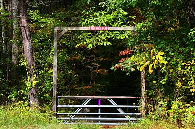 Photograph - Red Neck Blvd by Kathryn Meyer