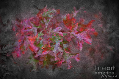 Photograph - Red Oak Leaves, Grapevine Texas by Greg Kopriva