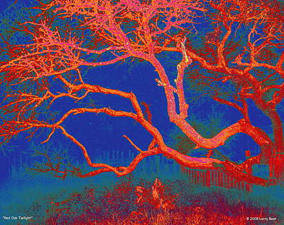 Photograph - Red Oak Twilight by Larry Beat