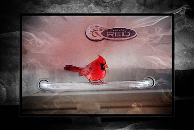 Red On Red Art Print by Ericamaxine Price