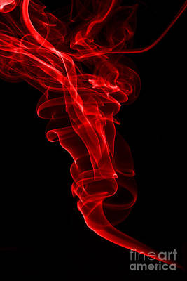 Photograph - Red One by Steve Purnell