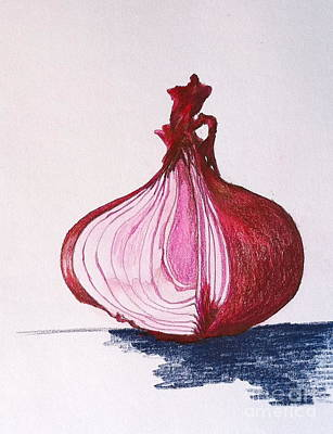 Drawing - Red Onion by Sheron Petrie
