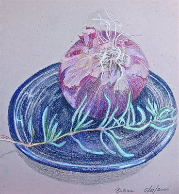 Onion Drawing - Red Onion With Rosemary Sprig  by Bonnie See