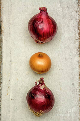 Food And Drink Photograph - Red Onions by Bernard Jaubert