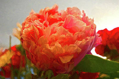 Photograph - Red Orange Shaded Peony by Sandi OReilly