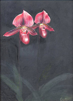 Painting - Red Orchids by Penrith Goff
