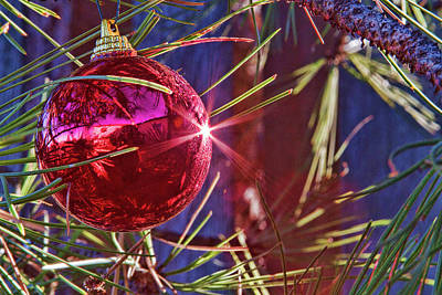 Photograph - Red Ornament by Alana Thrower
