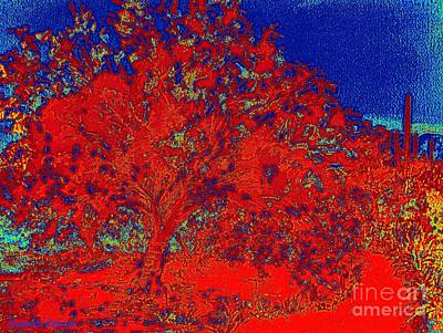 Painting - Red Palo Verdi by Summer Celeste