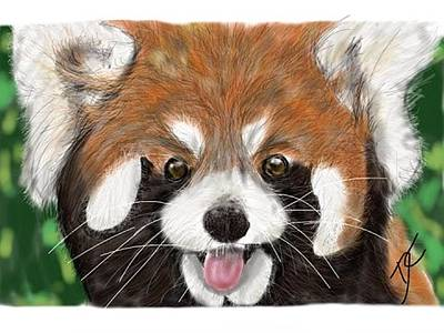 Digital Art - Red Panda by Darren Cannell