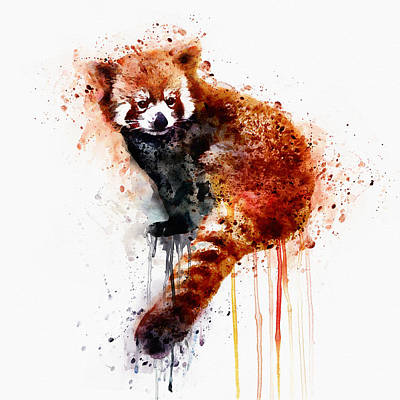 Red Panda Print by Marian Voicu