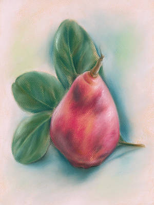 Pastel - Red Pear With Magnolia Leaves by MM Anderson