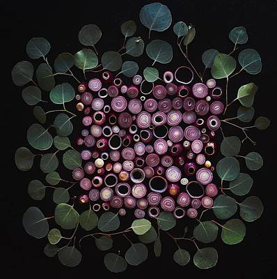 Photograph - Red Pearl Onions by Sarah Phillips