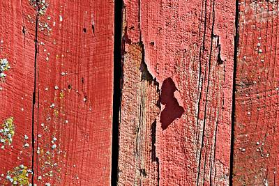 Photograph - Red Peeling Paint- Fine Art by KayeCee Spain