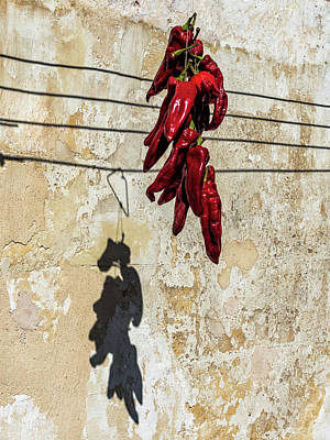 Photograph - Red Peppers Of Matera by Robin Zygelman