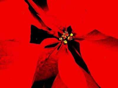 Photograph - Red Poinsettia by Beth Akerman