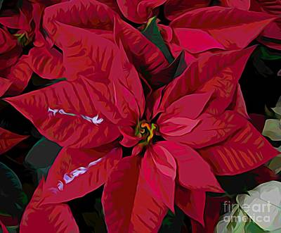 Photograph - Red Poinsettia Flowers With Melting Color Effect by Rose Santuci-Sofranko