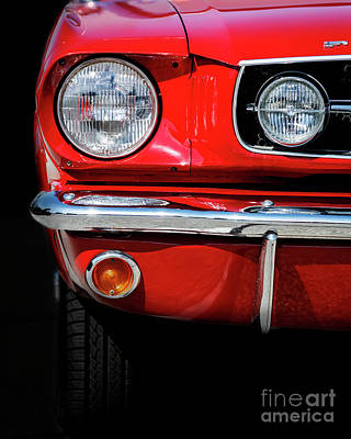 Photograph - Red Pony by Dennis Hedberg