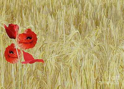 Photograph - Red Poppies 07 ...33.01 Prints For Sale by S Art