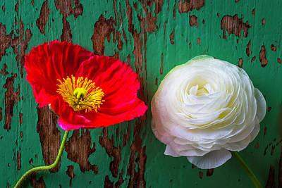 Chipping Paint Photograph - Red Poppy And White Ranunculus by Garry Gay