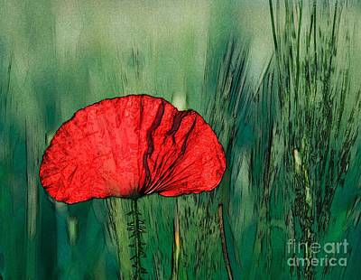Print featuring the photograph Red Poppy Flower by Jean Bernard Roussilhe