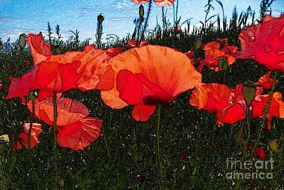 Print featuring the photograph Red Poppy Flowers In Grassland by Jean Bernard Roussilhe