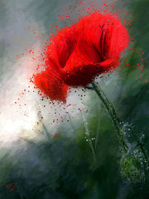 Painting - Red Poppy by James Shepherd