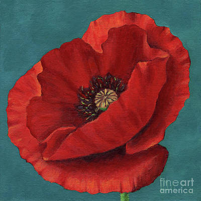 Painting - Red Poppy by Lisa Norris